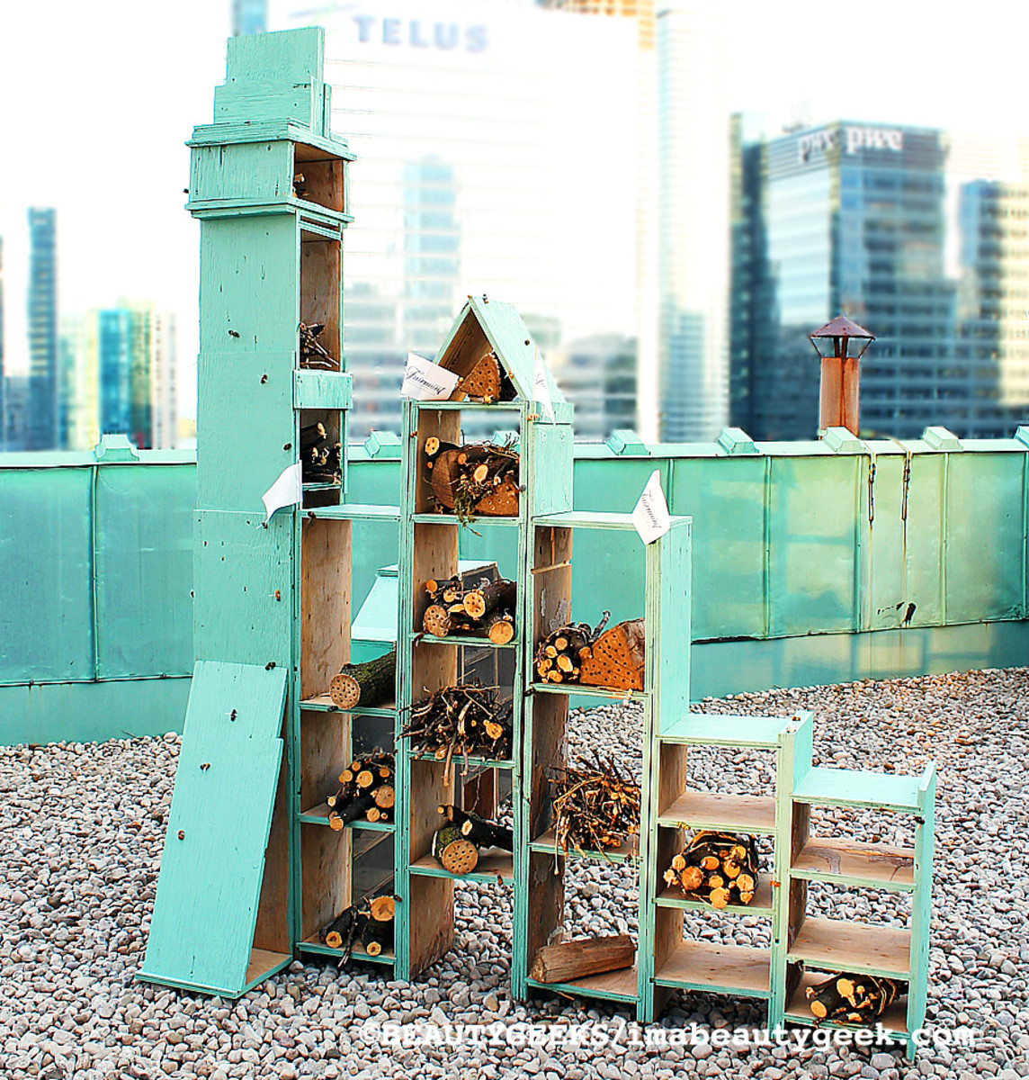 bee hotel atop the Royal York Fairmont Hotel in downtown Toronto
