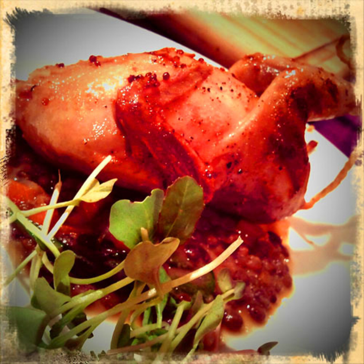 The Artist_pretentious delicate quail w French lentils