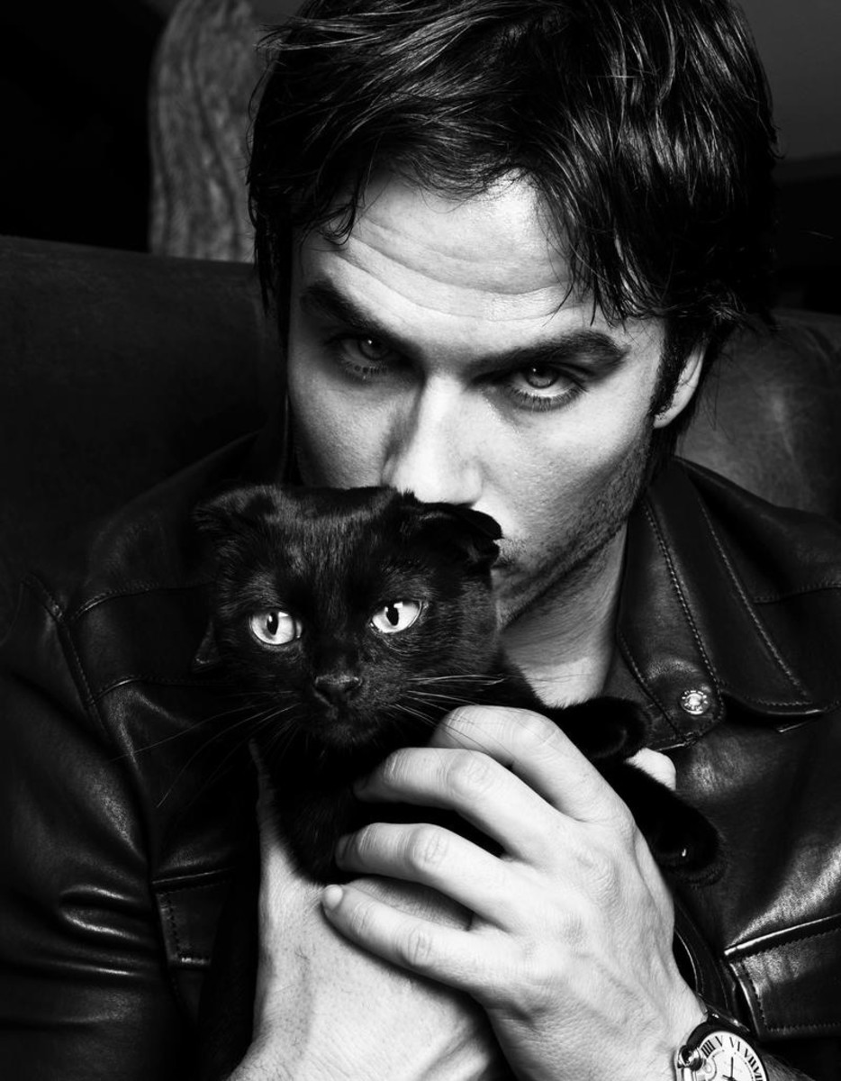 Awww, Ian Somerhalder is all I can haz black cats.