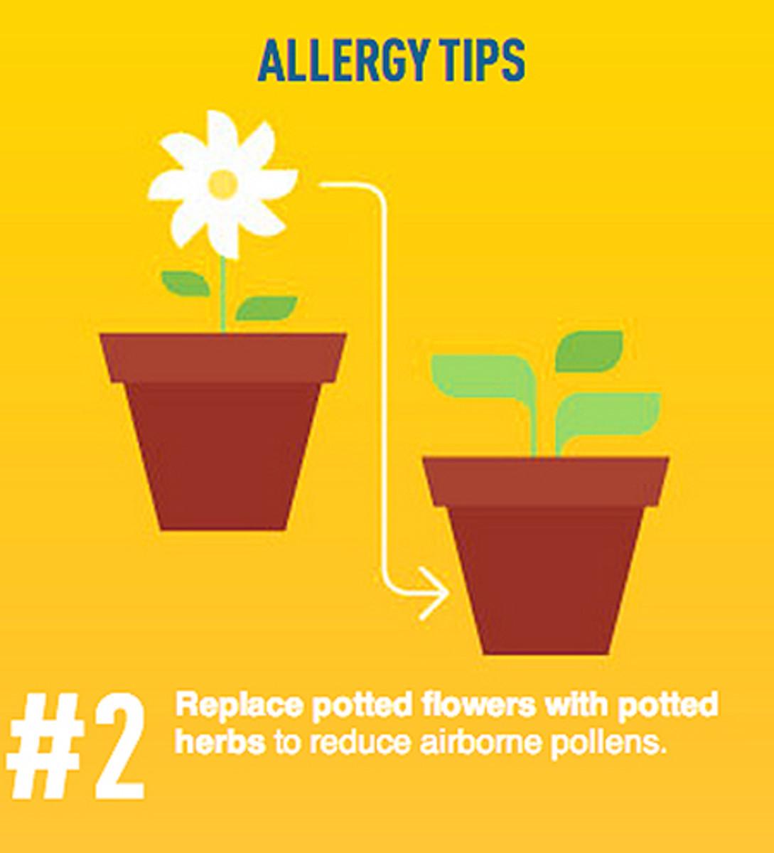 Reactine Liquid Gels_do they work_household plants tip.jpg