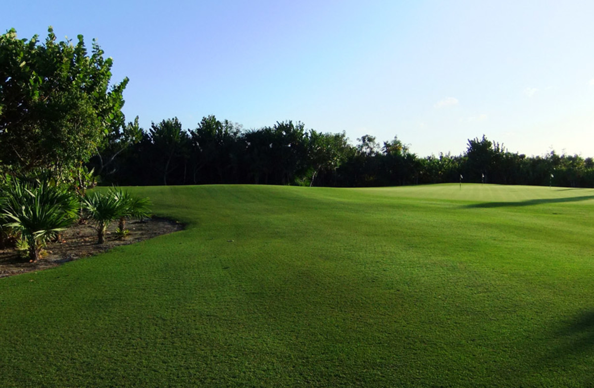 Excellence Playa Mujares_golf course green