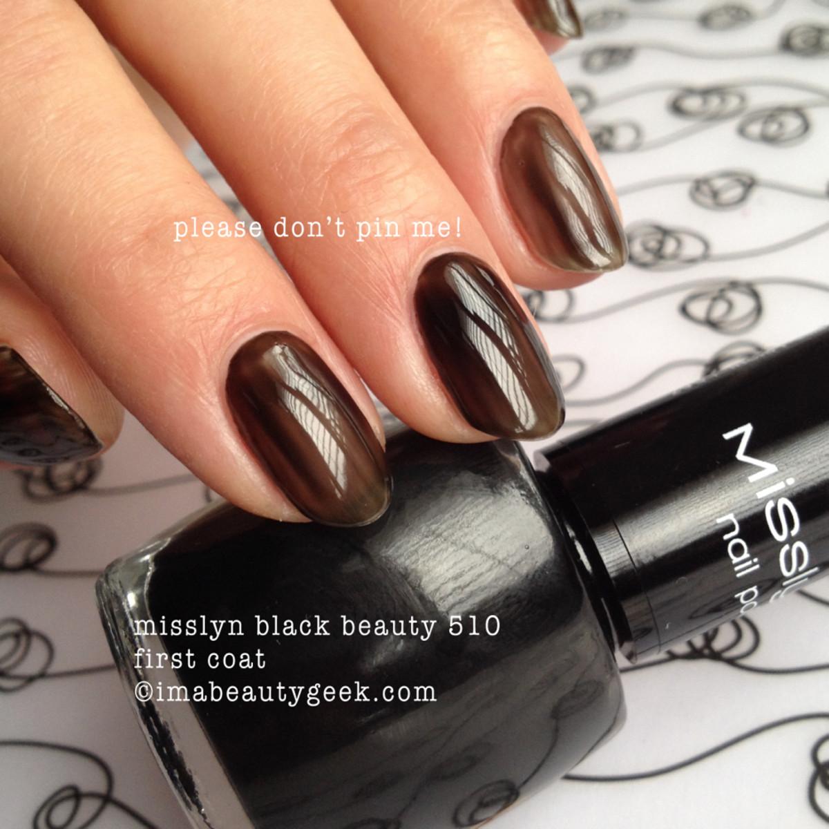 Misslyn Black Beauty 1st coat