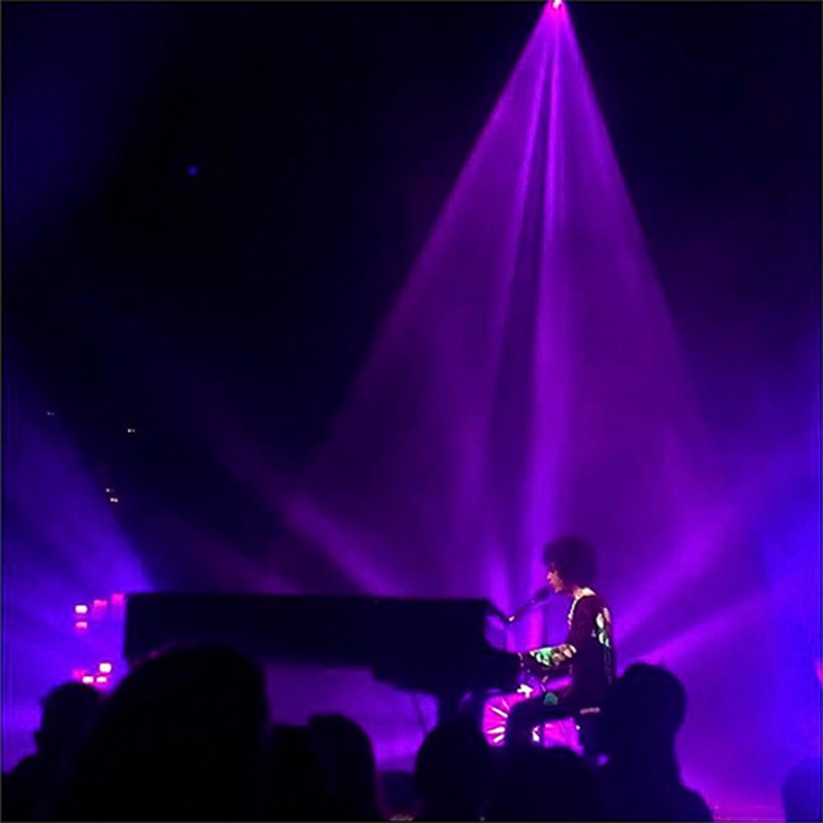 Prince (image via Instagram)