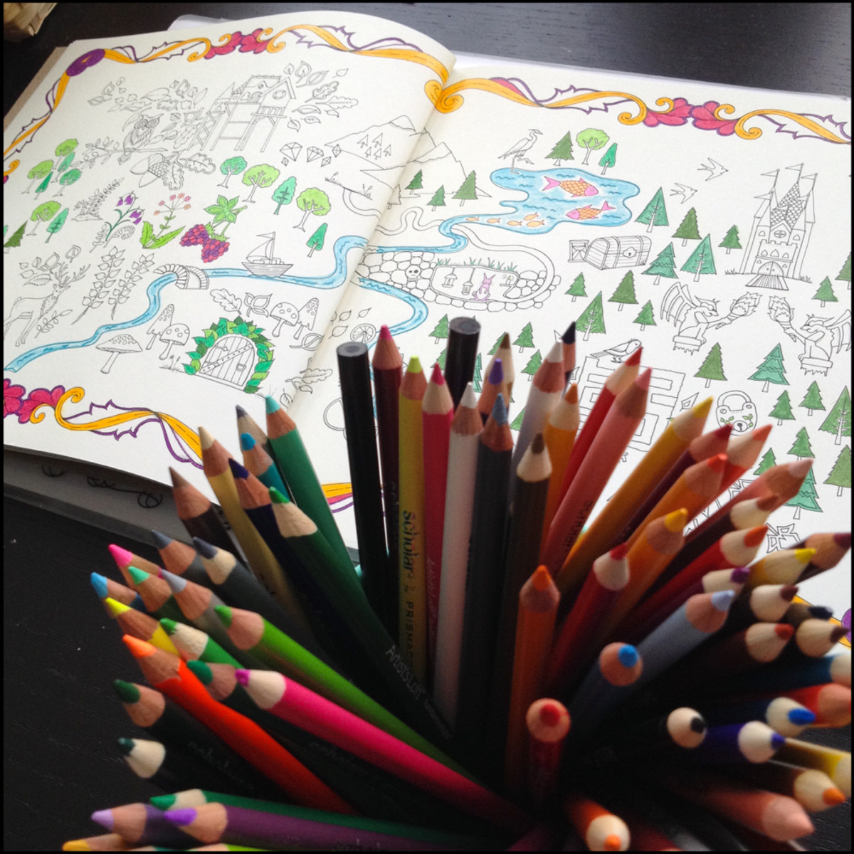 Adult Coloring Books_1