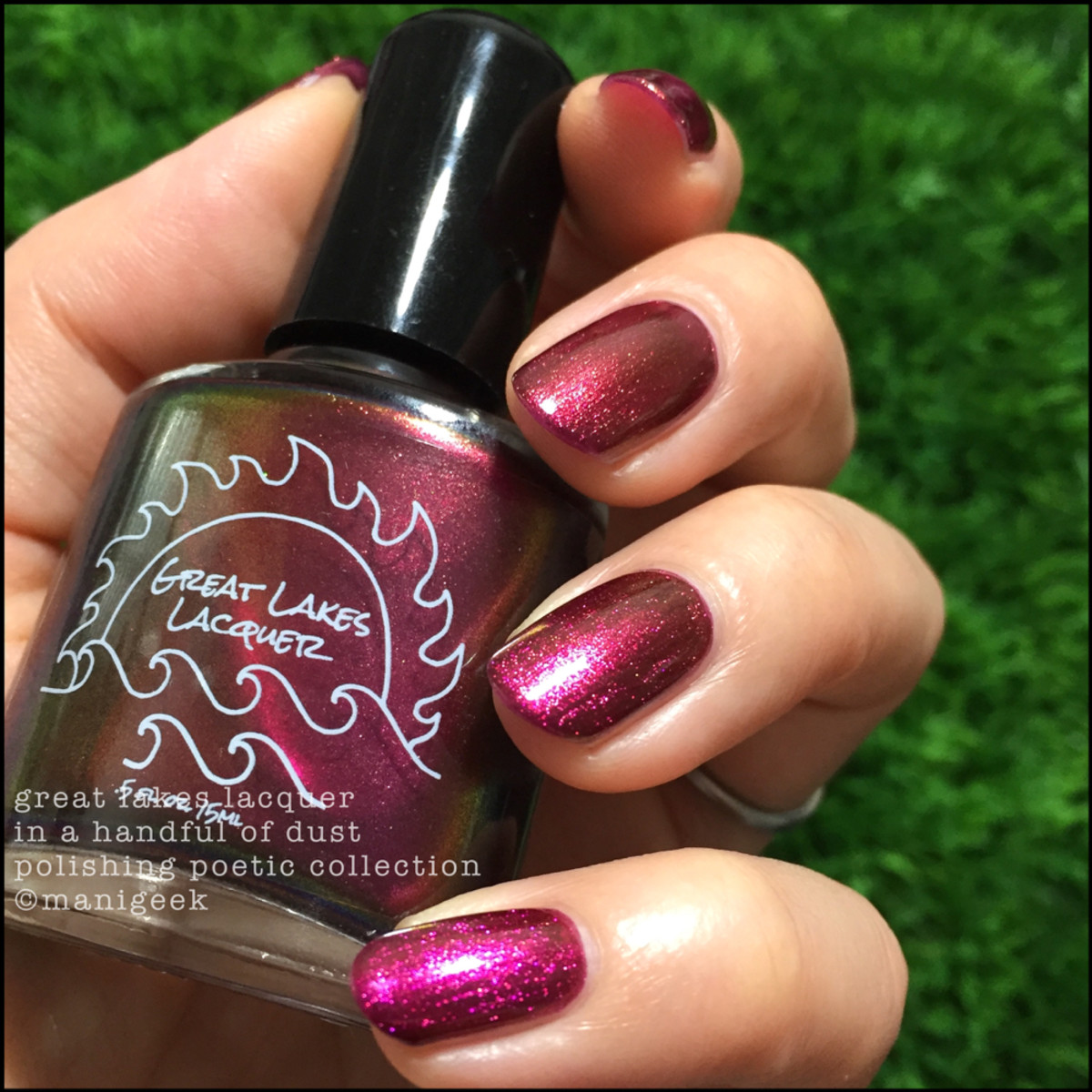 Great Lakes Lacquer In a Handful of Dust_IEC 2017