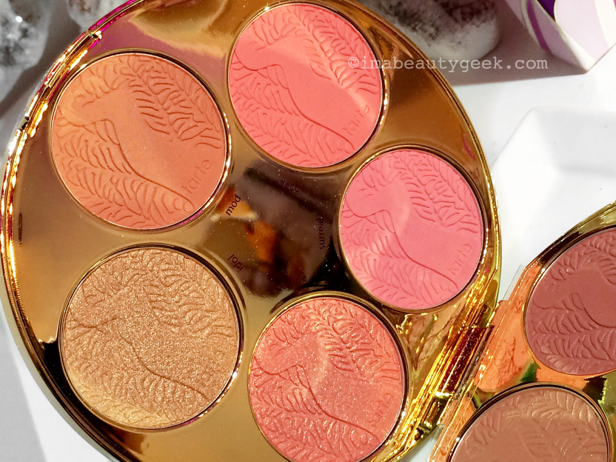 Tarte Color Wheel Amazonian Clay Blush Palette inner-lid blushes