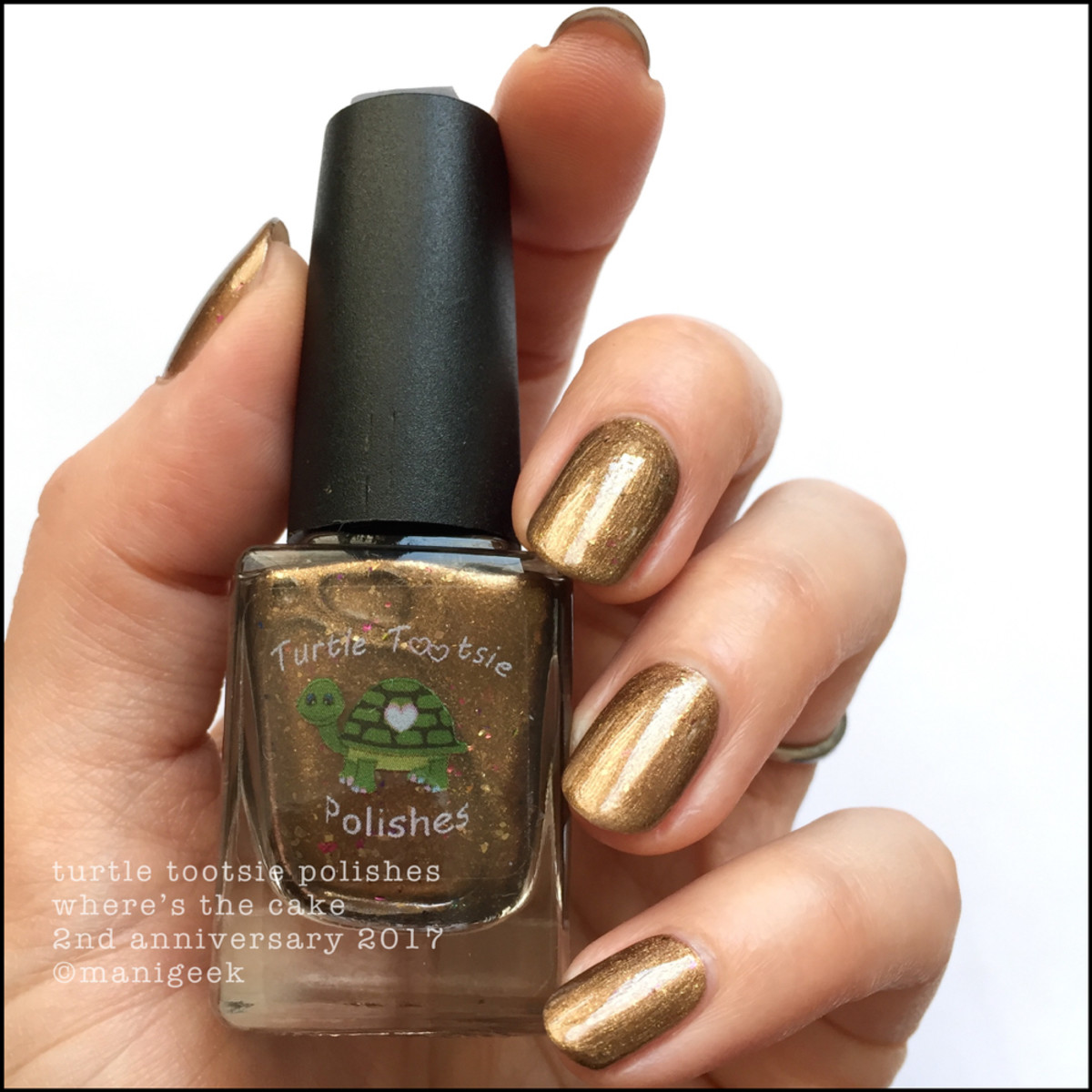 Turtle Tootsie Polish Where's the Cake NOTD _ Indie Expo Canada 2018