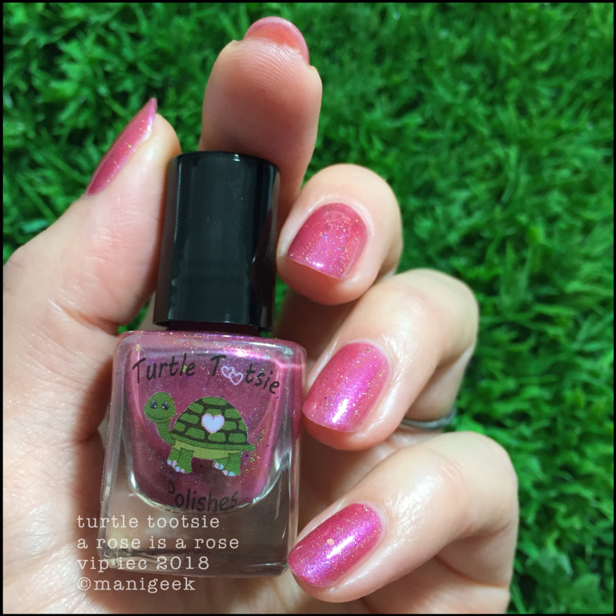 Turtle Tootsie A Rose is a Rose _ Indie Expo Canada 2018 VIP Swatches