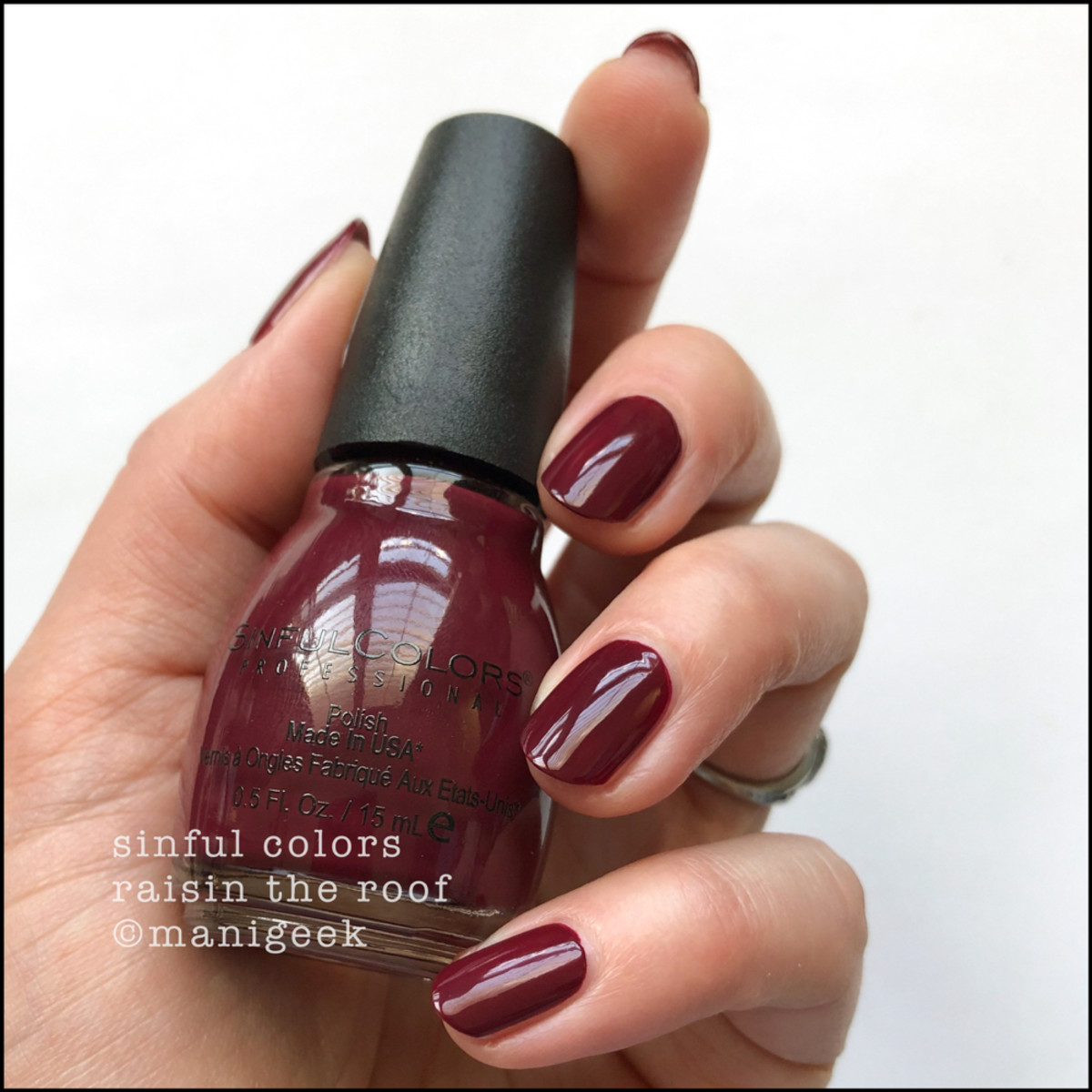 Sinful Colors Raisin the Roof - Sinful Colors Swatches 2019